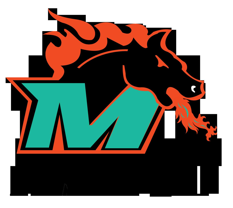 Miami Fury